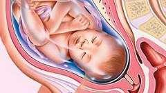 39 Тиждень вагітності