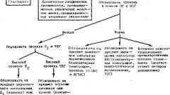 Анамнез, фізикальне обстеження, діагностика передчасного статевого дозрівання - діагноз передчасного (прискореного) статевого дозрівання