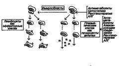 Діагностика і лікування - хронічний гломерулонефрит