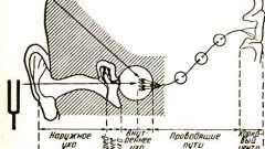 Фізіологія середнього вуха - хронічний гнійний середній отит