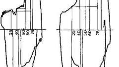 Ендоскопічна семіотика стенозу трахеї та бронхів - посібник з клінічної ендоскопії