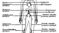 Морфологічні особливості розвитку атеросклерозу - атеросклероз і шляхи його профілактики