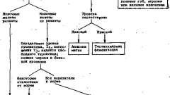 Оцінка і діагностичний підхід - аменорея