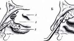 Операції на слізному мішку - хвороби слізних органів