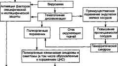 Патогенез і формулювання діагнозу - омськагеморагічна лихоманка