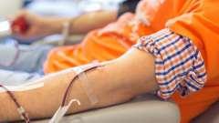 Користь і шкода здачі крові: 12 помилок про донорство