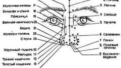 Рінопунктура і подопунктура - голкотерапія в анестезіології та реаніматології