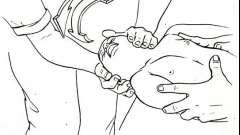 Шийний відділ хребта - патологія опорно-рухового апарату у дітей
