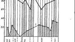 Виділення вірусу і утворення антитіл - краснуха