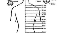 Заднесредінний меридіан - голкотерапія в анестезіології та реаніматології